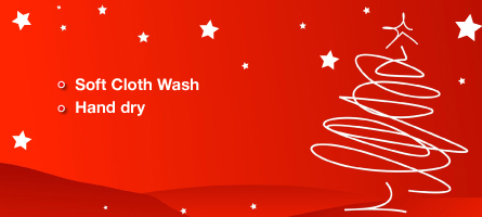 Holiday Exterior Wash Special